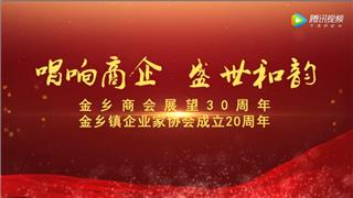 苍南县金乡商会展望30周年庆典(上)
